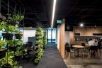 office design with vertical garden partition on left, walk way and kitchen and casual dining on right