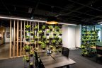workspace table and chairs, with vertical garden, corridor and vertical wooden spaced slats on opposite side.